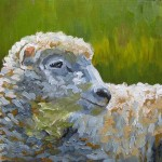 oil painting of a sheep