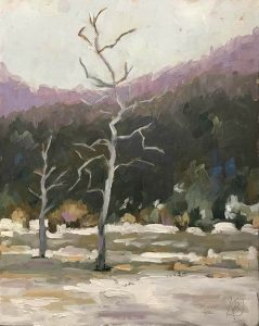 winter landscape of bare tree